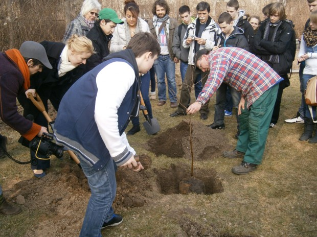 """Berlin-Birkenau"" by Łukasz Surowiec and WikiWoods: Join in the public planting at Volkspark Wuhlheide!"